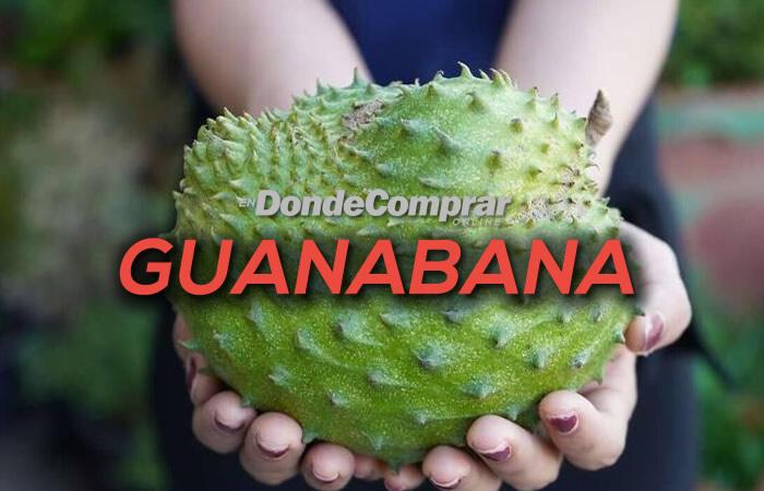 DONDE COMPRAR GUANABANA